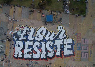 EL SUR RESISTE